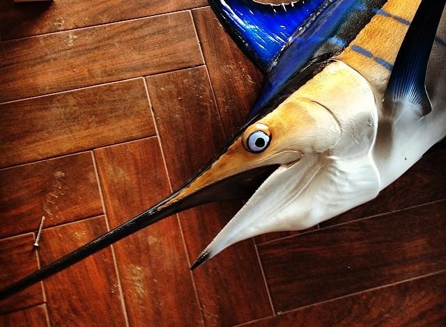 Rumfish Grill 1