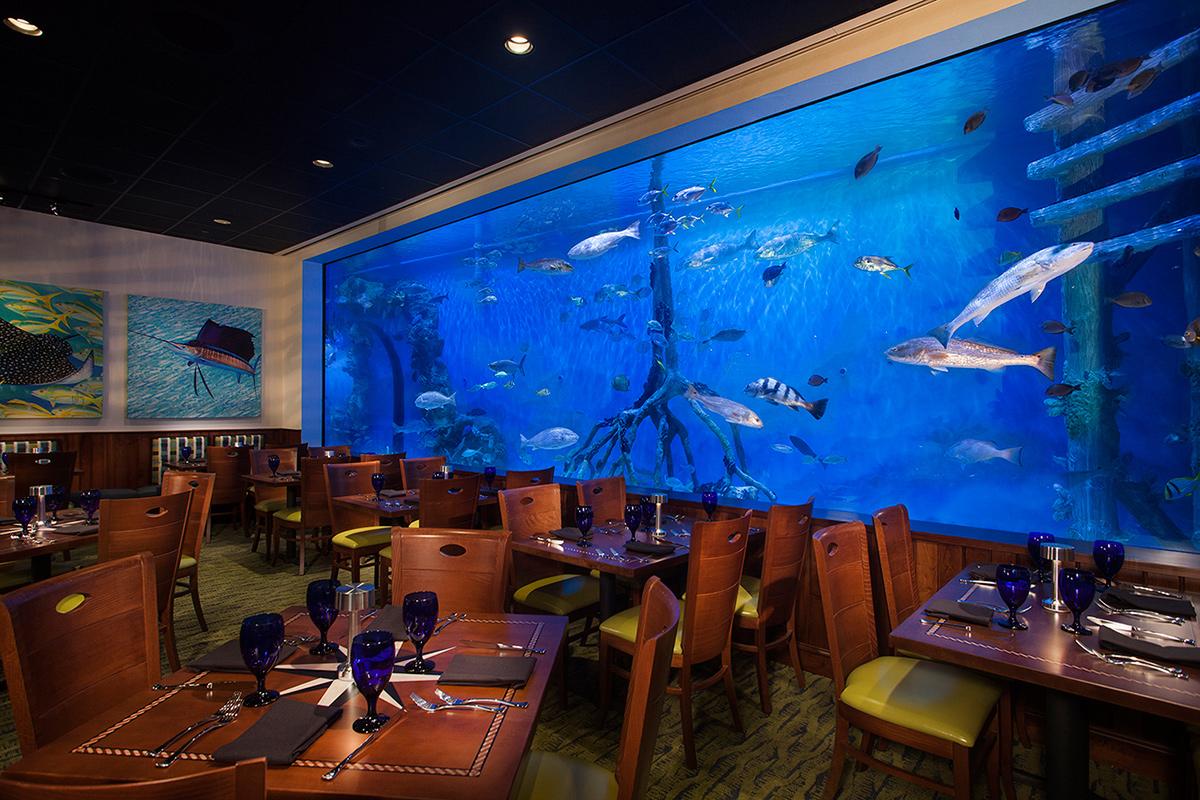 rumfish-3-1200x800-opt