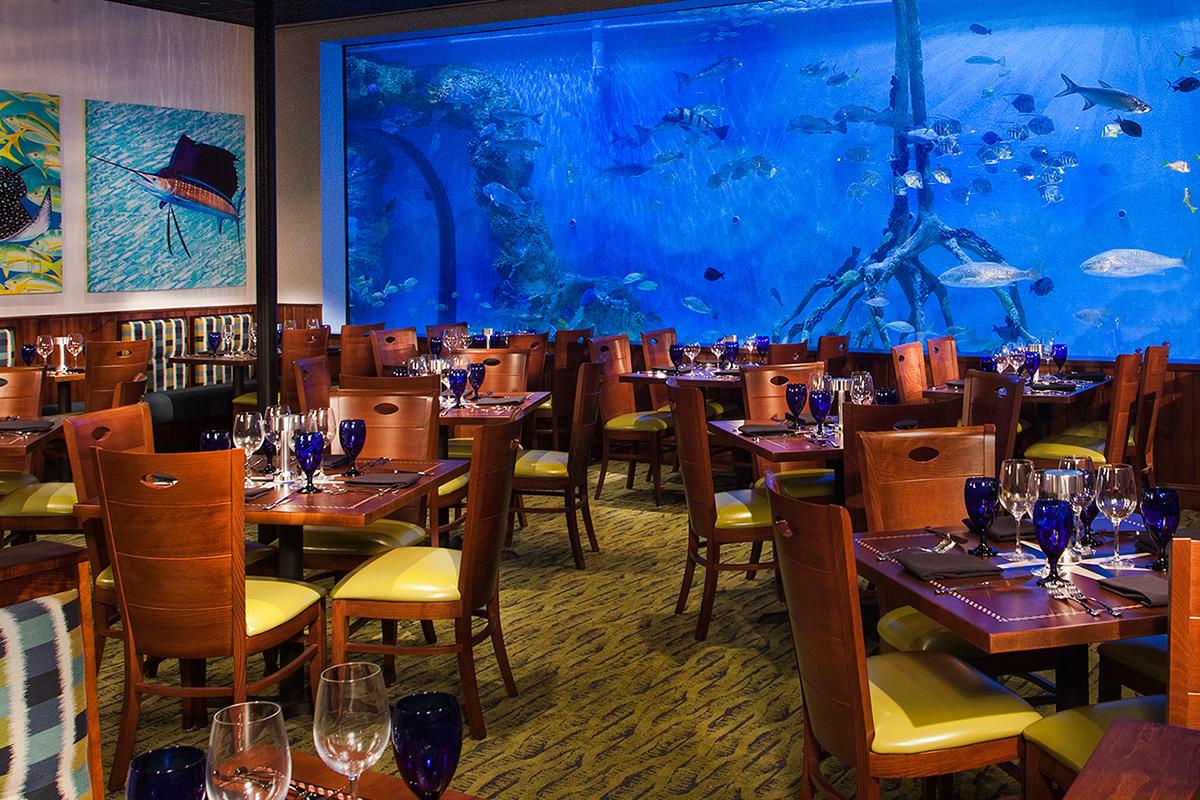 rumfish-4-1200x800-opt